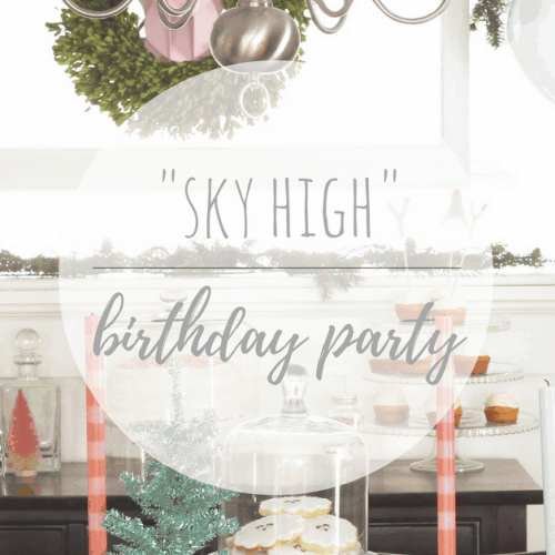 """""""Sky High"""" First Birthday Party"""